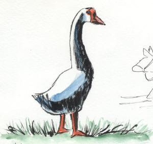 040216-goose