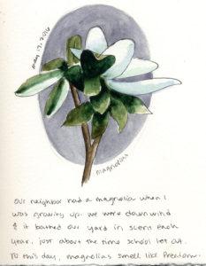051716-magnolia
