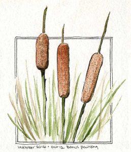 101216-inktober-reeds-2